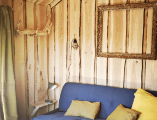 Expérience dans les cabanes spécial WHEELS & WAVES
