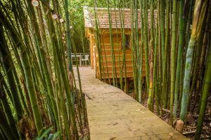EtxeXuria-cabane passerelle bambous