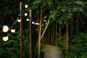 EtxeXuria-cabane passerelle bambous alumée