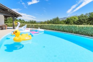 EtxeXuria-piscine canards